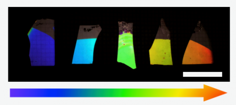 Photograph of porous DBRs, showing how the colour can be tuned across the visible range. This demonstrates only some of the large variation in control we have over the structure using this method.