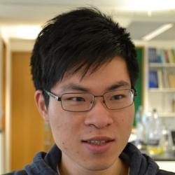 Dr Fung Sing  Choi