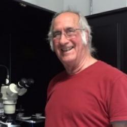 Dr Ted  Thrush